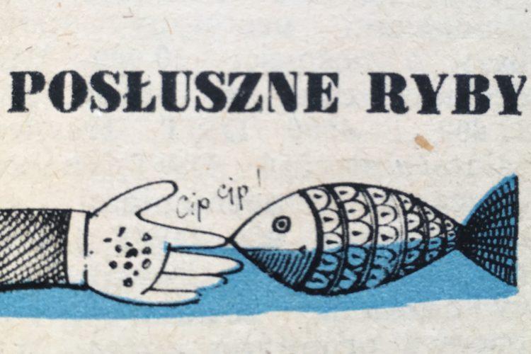 morze.org